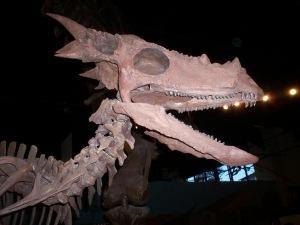 november-2008-042